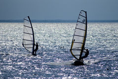 Due windsurfers Fotografie Stock Libere da Diritti