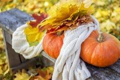 Due zucche arancio con le foglie e la sciarpa immagine stock