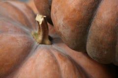 Due zucche arancione scuro di Cenerentola Fotografie Stock