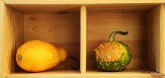 Due zucche decorative Fotografia Stock Libera da Diritti