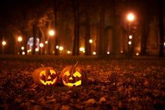 Due zucche gentili di Halloween nel parco Fotografia Stock