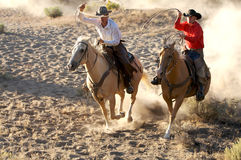 Dueling Cowboys. Two Cowboys galloping and roping through the desert stock photography