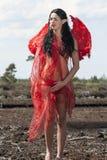 Duende com asas vermelhas Fotografia de Stock Royalty Free