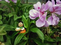 Duende na flor Imagens de Stock