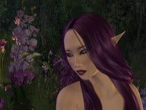 Duende y flores púrpuras Imágenes de archivo libres de regalías