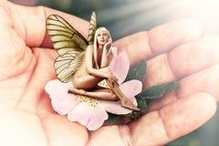 Duendecillo hermoso de la mujer con las alas de la mariposa Imagenes de archivo