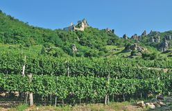 Duernstein Ruin,Wachau Valley,Austria Royalty Free Stock Photos