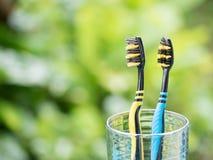 Duetów Toothbrushes w szkle Obraz Stock