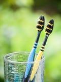 Duetów Toothbrushes w szkle Fotografia Royalty Free