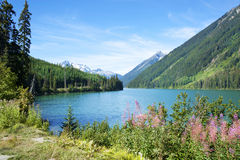 Duffey Lake in a summer Royalty Free Stock Photography
