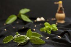 Duftpflanzen und Bestandteile Stockfotos