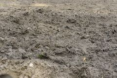 Dug up field, land without plants. agriculture background stock images