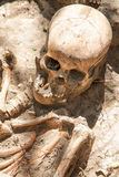 Dug up the skull. Royalty Free Stock Image
