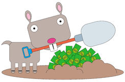 Dug up wealth. A gopher just dug up a bunch of dollar bills from the ground Stock Images