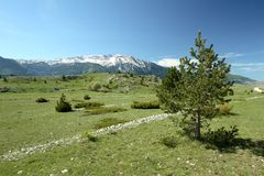 dugo Ερζεγοβίνη bosna polje tableland στοκ εικόνες