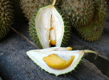 Duian fruit in farm Stock Images