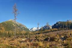 Duidelijk knipsel in Tatra-Berg, Slowakije stock afbeelding