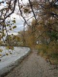 Duidelijk Meer in de herfst Stock Foto's
