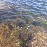 Duidelijk overzees water stock fotografie