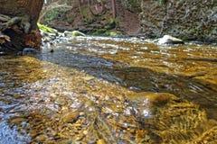 Duidelijk water Royalty-vrije Stock Foto's