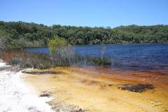 Duidelijk water in zoetwatermeer, Australië, Fraser Island royalty-vrije stock fotografie