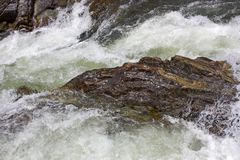 Duidelijk wild water in rotsachtig bed van bergstroom stock afbeeldingen