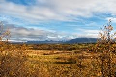 Duidelijke het landschapsmening van IJsland met gebied in reykjavik de herfstlandschap van duidelijke thingvellir Weer en Klimaat royalty-vrije stock foto