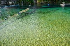 Duidelijke rivier stock foto