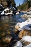 Duidelijke rivier in het hout Stock Foto's
