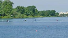 Duidelijke slepen aan het meer voor roeiers Jarun stock video