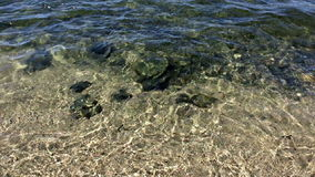 Duidelijke water en golven stock videobeelden