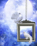 Duif 2 van de vrede vector illustratie