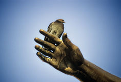 Duif op de hand van een beeldhouwwerk Stock Foto
