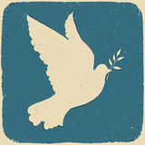 Duif van Vrede. Stock Foto's