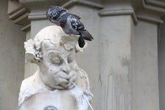 Duifzitting op standbeeld, lage hoekmening Royalty-vrije Stock Foto