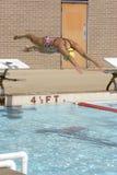 Duik, duik, duik Royalty-vrije Stock Afbeeldingen