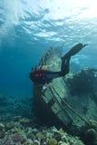 Duiker die onderwaterschipbreuk onderzoekt. royalty-vrije stock fotografie
