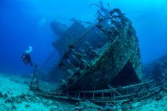 Duiker die Rood Overzees wrak onderzoeken stock foto