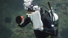 Duiker met vissen in een aquarium stock videobeelden