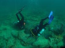 Duikers die Zeekreeften zoeken Stock Foto's