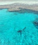 Duikers en koraal in het Rode Overzees stock foto's