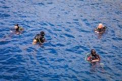 Duikers in het water royalty-vrije stock afbeelding