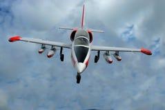 Duikvlucht-bommenwerper royalty-vrije stock fotografie