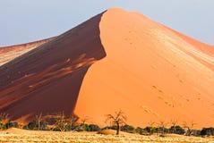 Duin 45 in woestijn Namib Royalty-vrije Stock Afbeeldingen