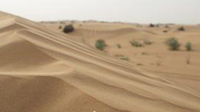 Duin in de wind Zand in de woestijn stock videobeelden