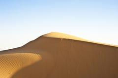 Duin in de woestijn Royalty-vrije Stock Afbeelding