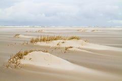 Duin die zich op een strandvlakte vormen Stock Fotografie