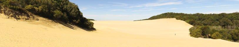 Duinen bij Meer Wabby, Fraser Island, Queensland, Australië Royalty-vrije Stock Foto's