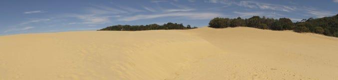 Duinen bij Meer Wabby, Fraser Island, Queensland, Australië Stock Foto's