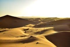 Duinen bij zonsondergang in de woestijn van de Sahara Royalty-vrije Stock Foto